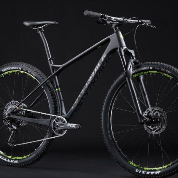 superspeed-2-eagle-angle-silverback-bikes